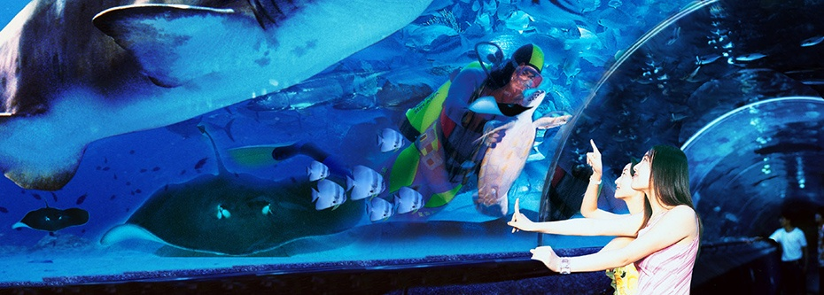 垦丁夜宿海生馆门票,台湾夜宿海生馆门票,垦丁夜宿海洋馆门票,台湾夜宿海洋馆门票,夜宿垦丁海洋生物博物馆